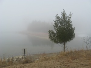 Lake and fog