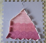 Blushing Cowlette pinned out during blocking